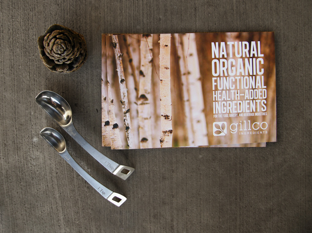 organic food brochure design